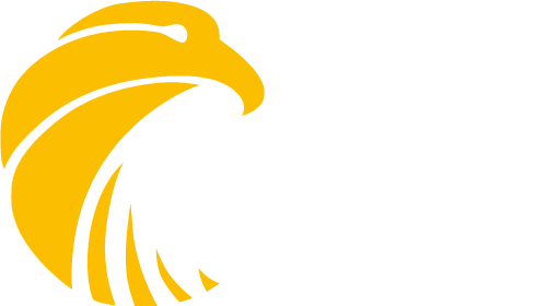 Falcon Generators